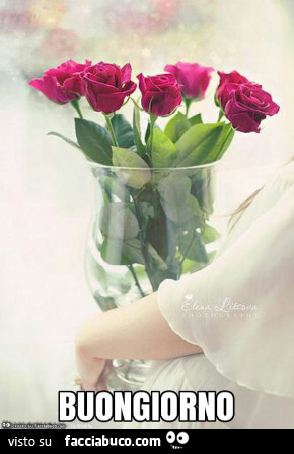 Vaso Di Vetro Con Bellissime Rose Buongiorno Facciabucocom