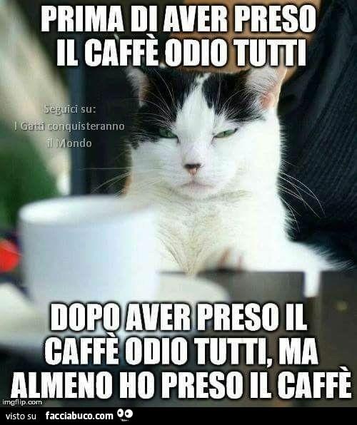 Prima di aver preso il caffè odio tutti. Dopo aver preso il caffè odio  tutti, ma… - Facciabuco.com