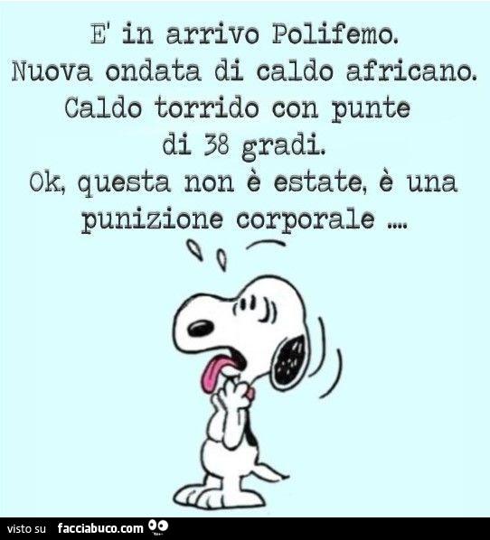 Snoopy E Il Caldo Immagini Powermall